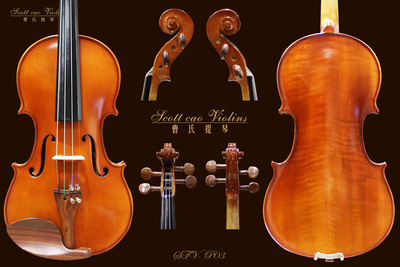 初级版用琴 STV-P03 学生用小提琴